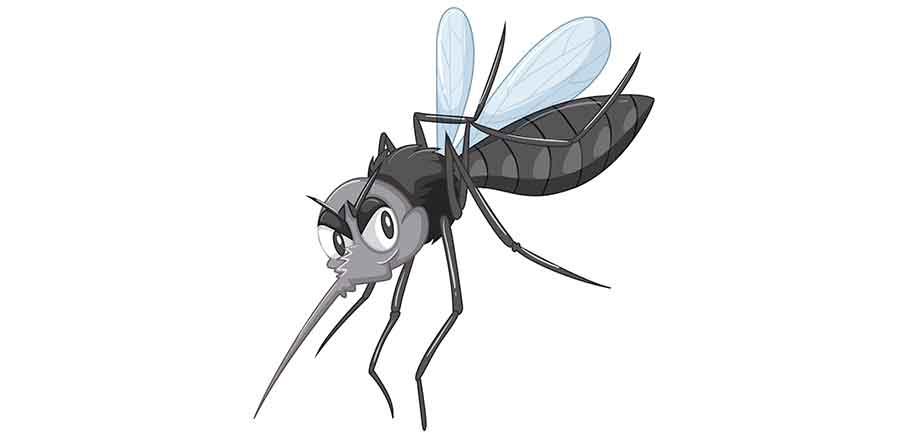 Εικαστικό με κουνούπι ένα απ' τα πιο συνηθισμένα έντομα καλοκαιριού.